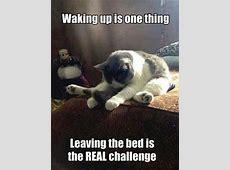 Die besten 25+ Guten Morgen Umarmung Ideen auf Pinterest