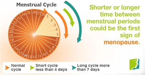 Short Menstrual Cycle Could Be a Sign of Menopause