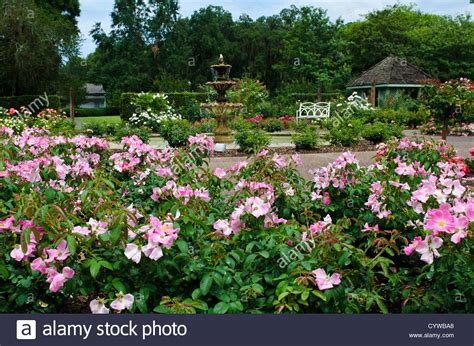 harry p leu gardens usa florida harry p leu gardens orlando florida stock