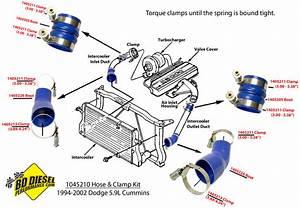 Intercooler Hose Clamp Kit Dodge 5 9l