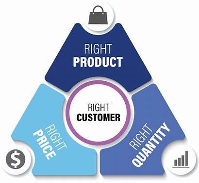 Customer Centric Platform Centricity Voice Voc Insight
