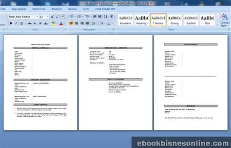 Template Resume Kerajaan Usa Professional Resume