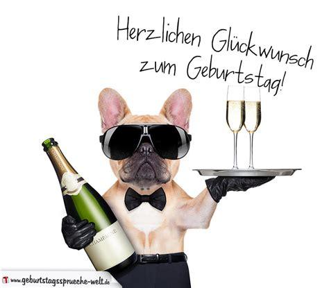 coole geburtstag sprüche gl 252 ckwunschkarte zum geburtstag mit mit coolem hund