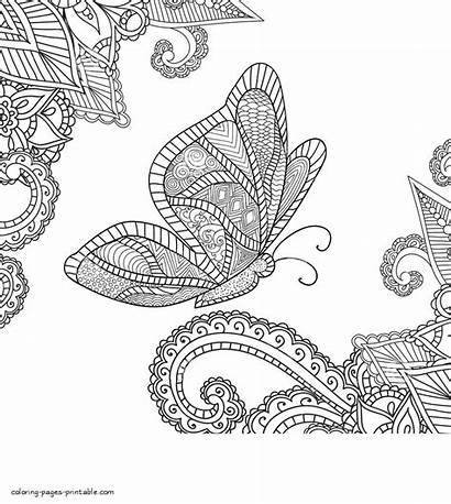 Coloring Pages Butterfly Adult Adults Exotic Printable