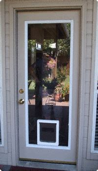 door with cat door built in glass pet doors perth wa glass pet doors door for