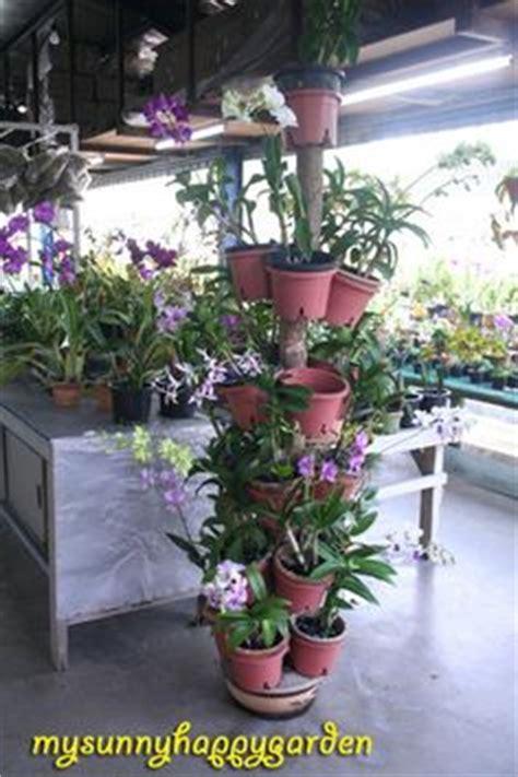 images  plant stands  pinterest plant