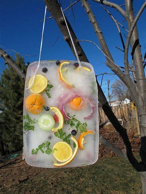 Our frozen sun catcher | Outdoor crafts kids, Winter ...