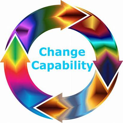 Change Capability Insight Changeable Introduction Chapter Norm