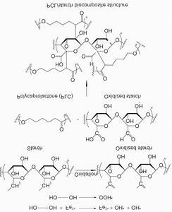 The Scheme Of Starch Oxidation And Cross
