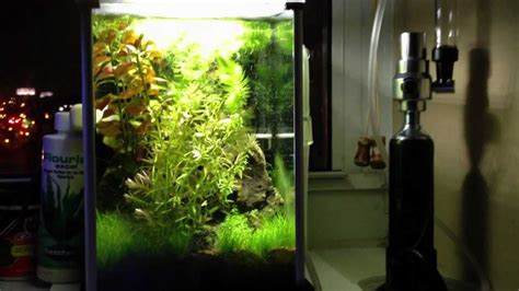 Fluval Spec Aquascape by Tbm S Hi Tech Fluval Spec Jungle Ruin Aquascape With Co2