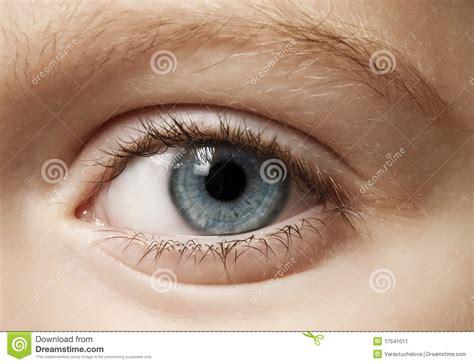 young eye stock image image