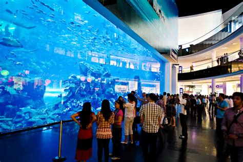 dubai mall aquarium water zoo pyramid tourism l l c