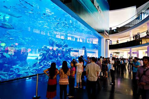 the dubai mall aquarium dubai mall aquarium water zoo pyramid tourism l l c