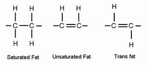 The Fastday Forum  U2022 Transfats  What Are They And How Does