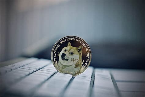 dogecoin price  promising predictions  late