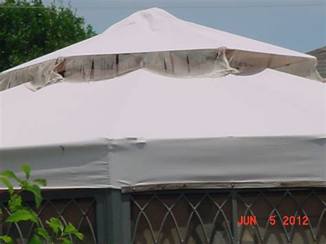 sports authority canopy transportable canopies sport behaviour