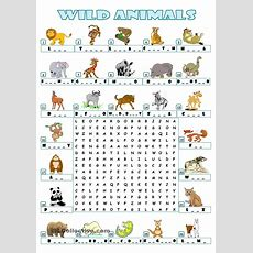 Wild Animals  Wordsearch  Esl For Elementary  Animal Worksheets, Worksheets, English Fun