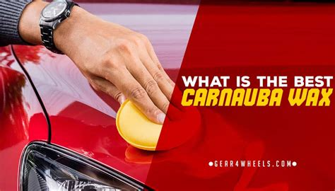 What is the Best Carnauba Wax? [Reviews and Comparison]