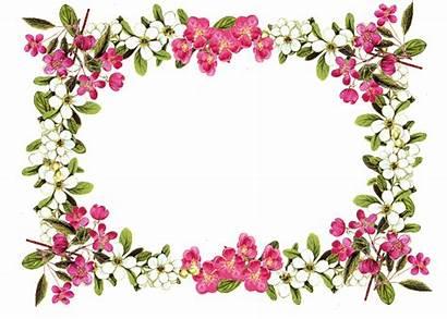 Border Clipart Flower Floral Vine Clipartion Vintag