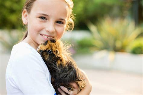 Haustiere Fuer Kinder by Haustiere F 252 R Kinder Das M 252 Ssen Sie Beachten Consumo