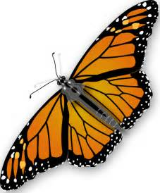 Image result for butterfly clip art