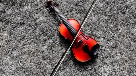 magnificent violin wallpaper full hd pictures