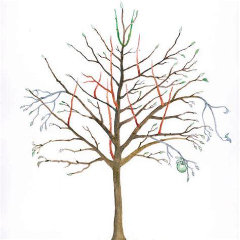 alten apfelbaum schneiden alten apfelbaum schneiden alten apfelbaum schneiden