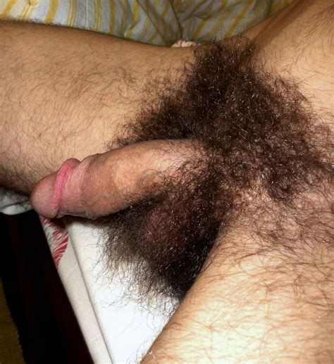 Picture Of Hairy Balls Sex Picture Women Usa