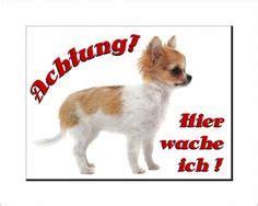 hundebekleidung für chihuahua diskretion bitte abstand halten schilder schilder und