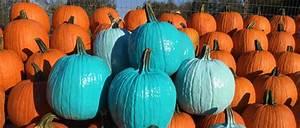 Une Citrouille Pour Halloween : une citrouille turquoise pour l halloween ~ Carolinahurricanesstore.com Idées de Décoration