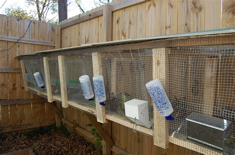 Building Rabbit Cages For Meat Rabbits