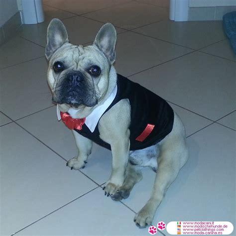 dog tuxedo dog dinner jacket shipping  usa  canada
