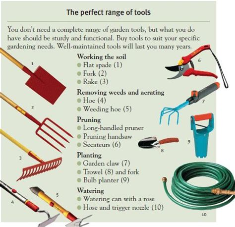 different tools in gardening the perfect range of gardening tools garden diva s place pinterest