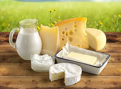 Cheese Wallpapers Milk