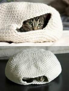 Kochen Für Katzen : die 25 besten ideen zu katzenspielzeug auf pinterest ~ Lizthompson.info Haus und Dekorationen