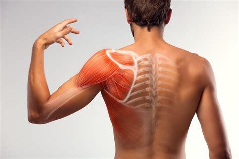 Muscle Strains: Treatment in Fairfax, VA | SAPNA: Spine ...