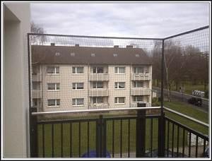 katzennetz balkon montage ohne bohren balkon house und With katzennetz balkon mit zimmervermittlung garding