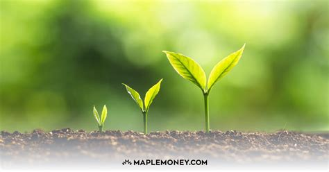 How You Can Develop Better Money Habits - MapleMoney