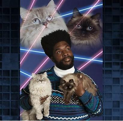 Cats Okayplayer Tonight Christmas Helper Laser Lasers