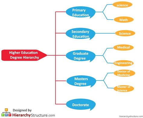higher education degree hierarchy hierarchy structure