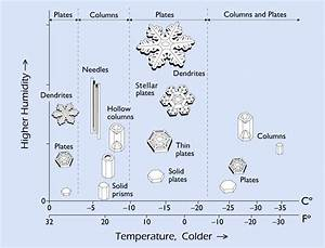 Guide To Snowflakes