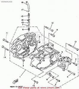 Yamaha Yfb250e Timberwolf 1993 Crankacase