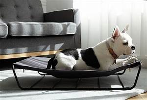 modern dog beds and accessories from howlpot dog milk With modern dog bed furniture