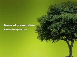Tree Powerpoint Template The Highest Quality Powerpoint