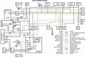 Download  Schema  Suzuki Ts 50 X Wiring Diagram Hd Version