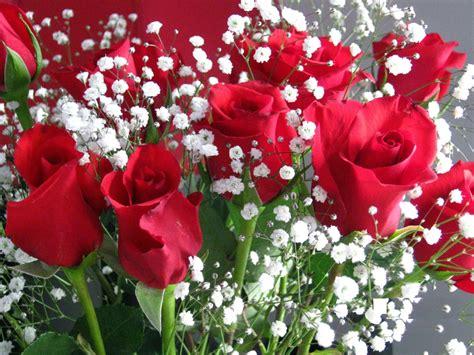 pick flowers   anniversary anza del amo florist