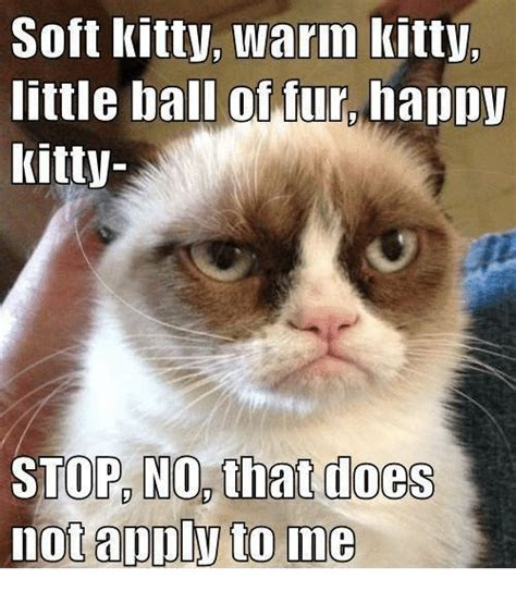 Soft Kitty Meme - soft kitty warm kitty little ball of fur happv kitty stop no that does not apply to me kitties