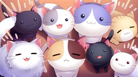 Cat Anime Wallpaper - cat nyan cafe macchiato visual novel wallpapers hd