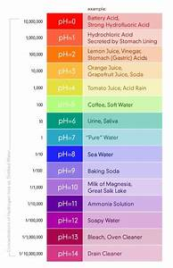 Cosmetology Ph Scale  Qp48  U2013 Advancedmassagebysara