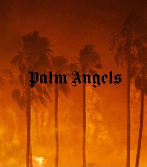 palm angels  angel wallpaper palm angels hypebeast